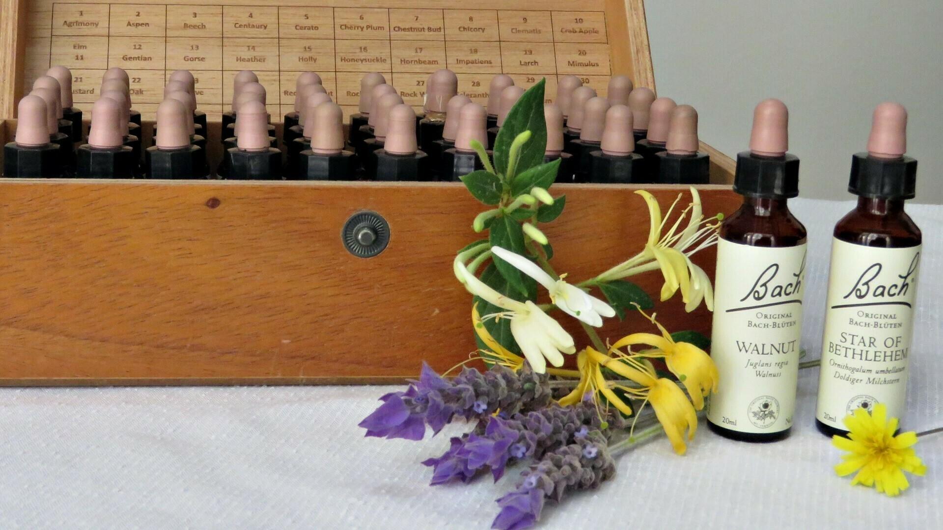 Portada Flores de Bach 1